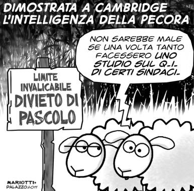 pecore_intelligenti_3